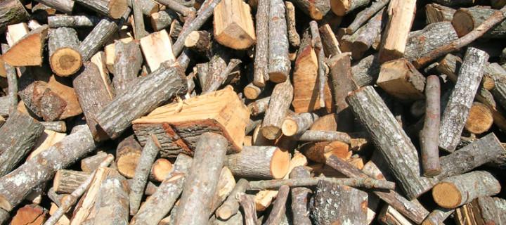 Guida alla scelta della legna da ardere